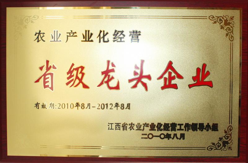 荣誉-江西省省级龙头企业