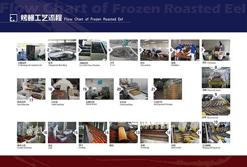 烤鳗生产流程